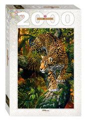 Pusle Step Puzzle 2000, Leopard
