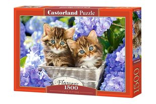 Pusle Puzzle Castorland Cute Kittens, 1500 osa