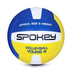 Võrkpall Spokey Young II, kollane/sinine/valge hind ja info | Võrkpall | kaup24.ee
