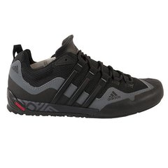 Meeste spordijalatsid Adidas TERREX SWIFT SOLO D67031