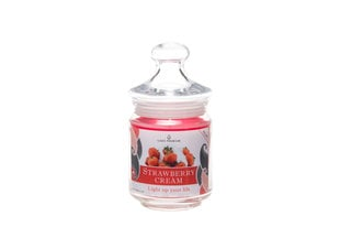 Lõhnaküünal STRAWBERRY CREAM hind ja info | Küünlad, küünlajalad | kaup24.ee