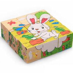 Puidust klotsid Loomad hind ja info | Imikute mänguasjad | kaup24.ee