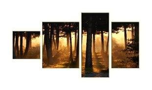 Neljaosaline maal, mets